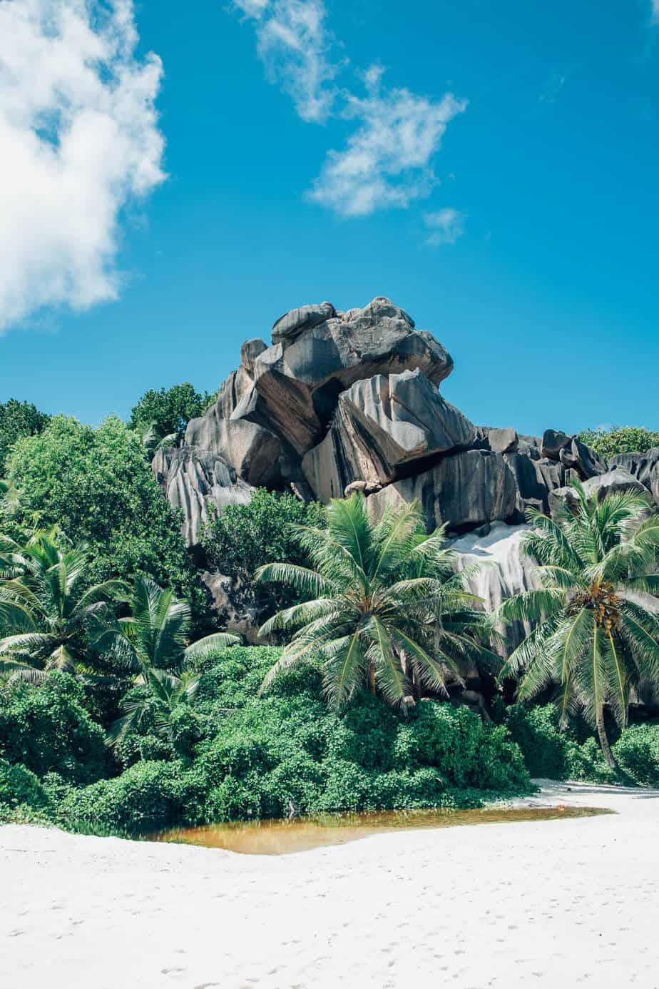 Seychelles La Digue Island Beach with Coconut Trees and Sky and Clouds